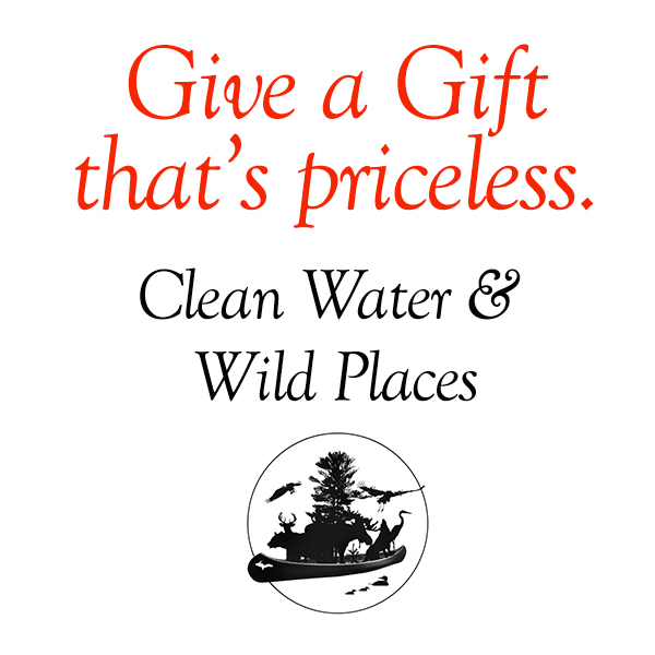 swup-give-priceless-gift-o