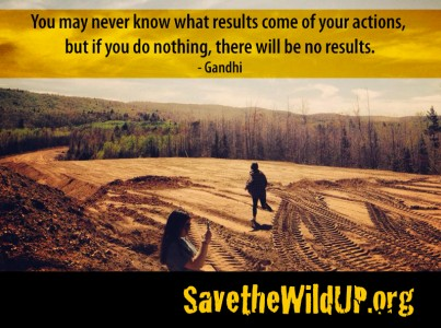 meme-Fellows-actions-Gandhi