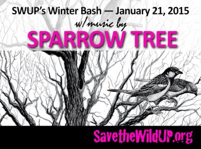 sparrowtree-wordpress
