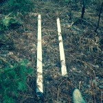 White trash:  PVC pipes used by Eagle Mine's contractors during 2014 mineral exploration were abandoned in woods, swamps and ravines of the Yellow Dog Plains.