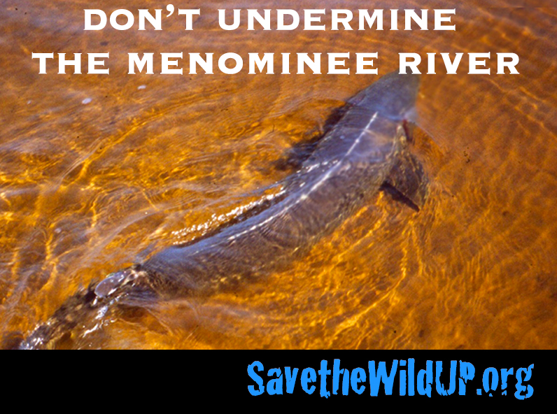 meme-dont-undermine-menominee-sturgeon