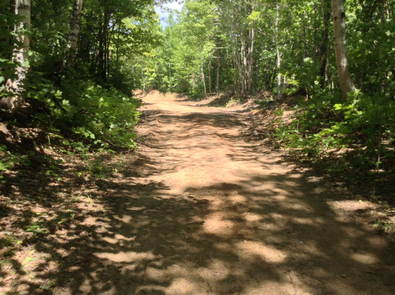 Marquette County Trail #5, 2014, before road widening.